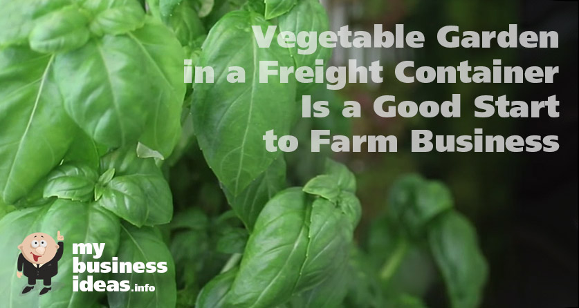 Vegetable garden in a freight container