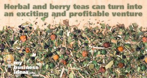 herbal and berry tea