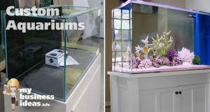 Types of Custom Aquariums